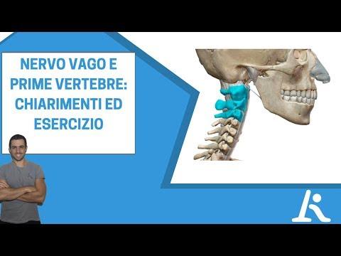 Esercizio sdraiato sulla schiena con osteocondrosi