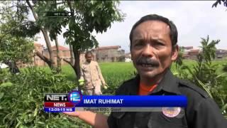 Antisipasi Bencana Alam Di Sejumlah Daerah  NET12