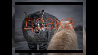 Рисуем мультфильмы 2 | ДРАКА