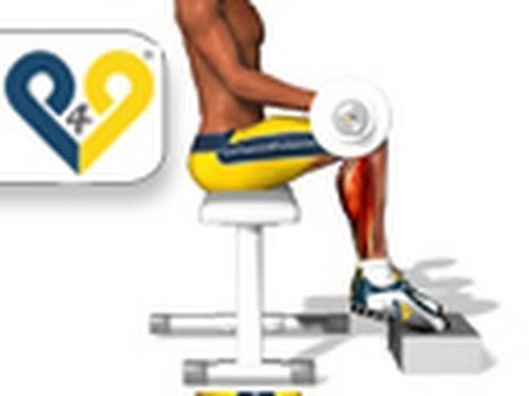 Lexercice pour les muscles directs et obliques du ventre pour