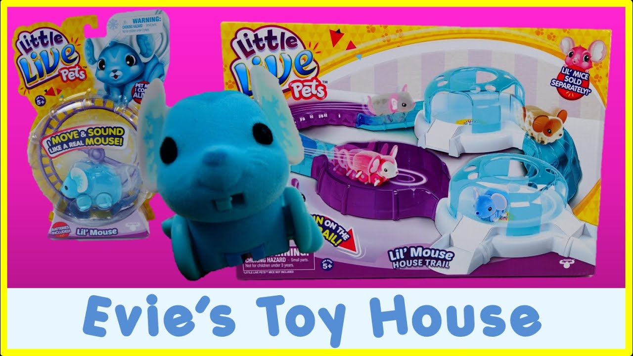 Little Live Pets Mouse and Lil' Mouse House Trail | Evies Toy House