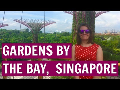 Singapore, Gardens by the Bay : Golden Princess, Asia Cruise VLOG 1.