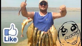 Ловля сазана в азербайджане