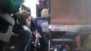 Необычный пассажир самолёта – пингвин Пит