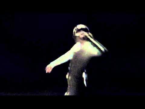 D.A.N. - Native Dancer (Official Video)