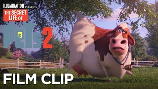 The Secret Life Of Pets 2   Clip: Cow Taunts - Now on 4K, Blu-ray, DVD & Digital   Illumination