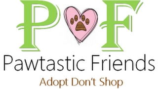 Pawtastic Friends - Enrichment Training: Your Donations at Work!