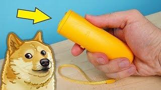 Отпугиватель Собак с Алиэкспресс! Боятся ли его собаки Проверка! alex boyko