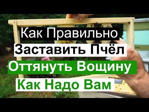 https://youtu.be/DpDWV7pd1jI