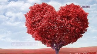 """Relaxing Peaceful Romantic Instrumental Music """"Valentine Heart"""" by Tim Janis"""