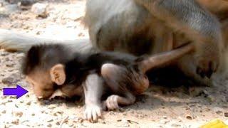 Yeah! It Is First Time To See Baby Timo Learn To Walk Around Mom Tima| Really Glad To See Like This