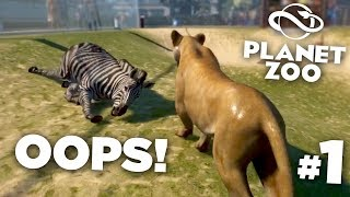 Lion Attack da Zebra!!! - Planet Zoo Ep1 HD