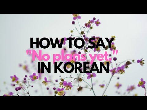 Learn Korean - Speak Daily Conversation : No plans yet.