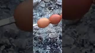 Шашлык из яиц...
