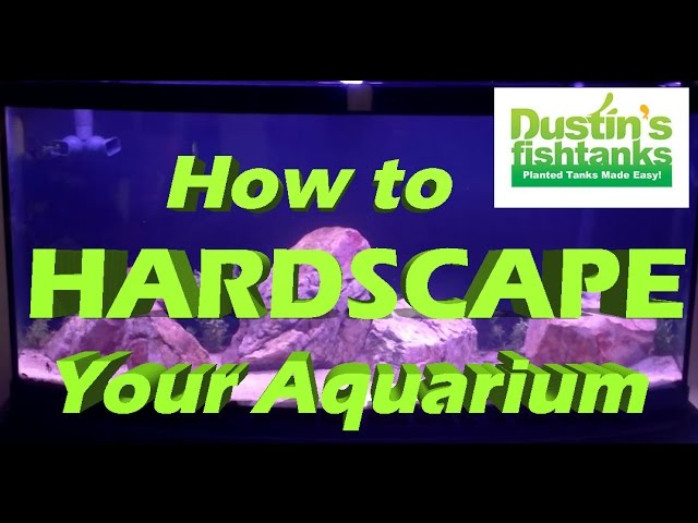 How to Hardscape an Aquarium: Steve's tank on Superbowl Sunday.