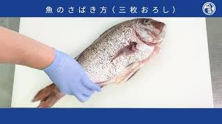 【公式】大阪市水産物卸協同組合が教える、魚のさばき方!基本の三枚おろしを解説