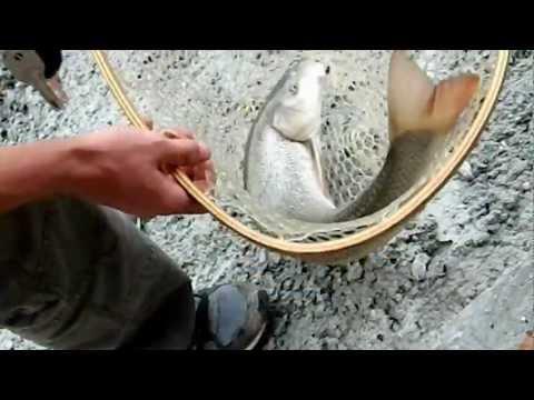 Posti per fishings Krasnodar