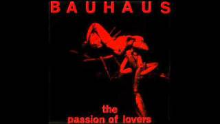 BAUHAUS ~ The Passion of Lovers