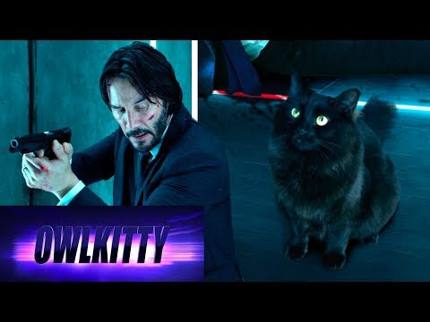 This guy has a YT channel where he edits his cat into Hollywood blockbusters. His 'John Wick & Kitty' is the greatest thing ever.