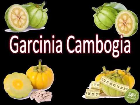 ЖИРОСЖИГАТЕЛЬ GARCINIA CAMBOGIA