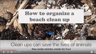 How to organize a beach clean up.
