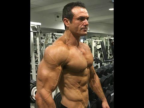 Comme sappellent les muscles sur le dos