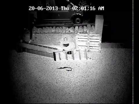 Idiot Thief Robs CCTV Company, Is Immediately Caught With CCTV Footage