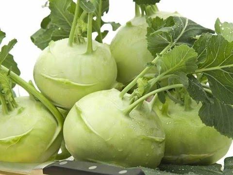 25.Как вырастить капусту кольраби. Сорта и полезные советы.