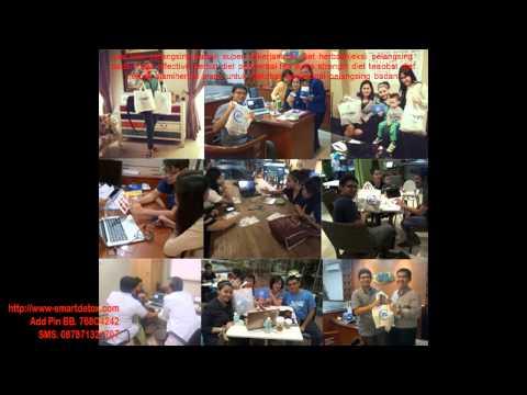 Buku harian listrik pelangsing secara online