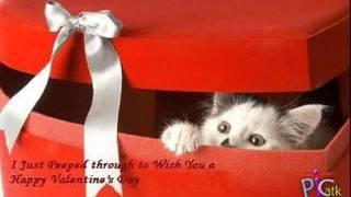 تحميل اغاني مجانا اجمل يوم لمحمد سامى رومانسى اوى اهداء\ تيكو
