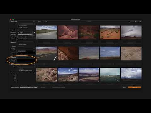 Capture One vs Lightroom: What Software To Choose and What Does