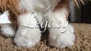 Legacy WMV