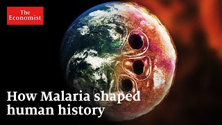 What is history's deadliest pandemic? | The Economist