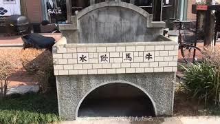 【関内ホール映像ディレクター講座_作品07】