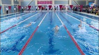 Победители Кубка Новгородской области по плаванию войдут в сборную региона