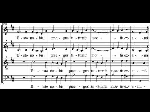 Música Ave Verum Corpus (latim)