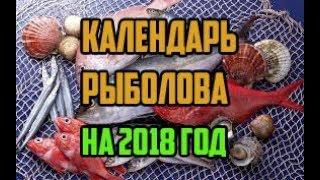 Рыбалка на лебяжке в марте месяце