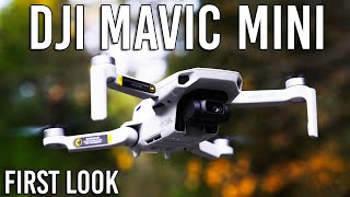 DJI Mavic Mini Drone - Specs & Footage | First Look