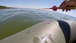 Летняя рыбалка на кременчугском водохранилище