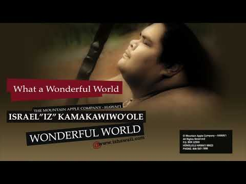 Wonderful World (Audio)