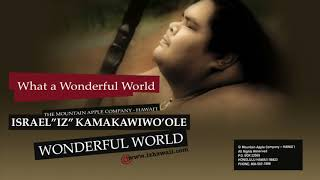 Wonderful World (Audio) - Israel Kamakawiwo'ole  (Video)