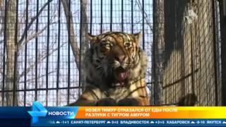 Козел Тимур отказался от еды после разлуки с тигром Амуром