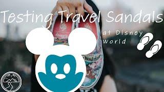 Disney World Walking Shoe Adventure