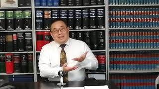「陳震威大律師」 之 港澳示威