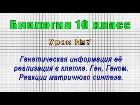 Биология 10 класс (Урок№7 - Генетическая информация её реализация в клетке. Ген. Геном.)