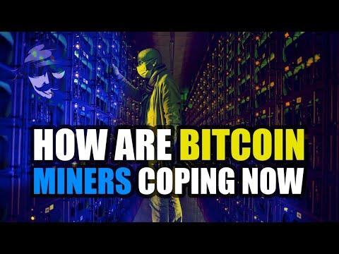 Bitcoin asic romania