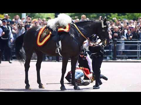 Ex-forces chief Lord Guthrie in hospital after Trooping the Colour horse fall