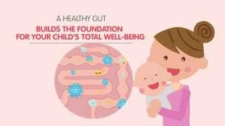Gut Health: Did You Know?