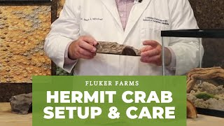 Hermit Crab Care and Setup Tutorial : Fluker Farms
