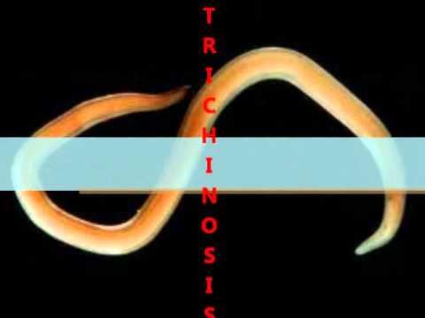 Trichinosis tabletták